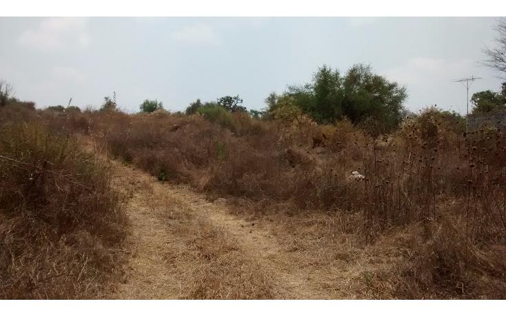 Foto de terreno comercial en venta en  , el sabino, marcos castellanos, michoac?n de ocampo, 2015896 No. 03