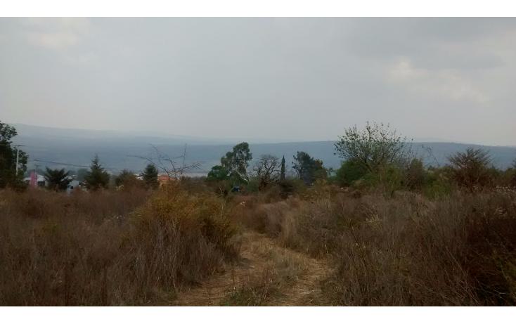 Foto de terreno comercial en venta en  , el sabino, marcos castellanos, michoac?n de ocampo, 2015896 No. 05