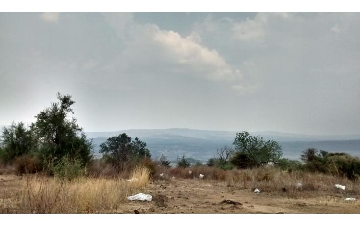 Foto de terreno comercial en venta en  , el sabino, marcos castellanos, michoac?n de ocampo, 2015896 No. 07