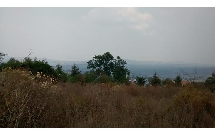 Foto de terreno comercial en venta en  , el sabino, marcos castellanos, michoac?n de ocampo, 2015896 No. 10