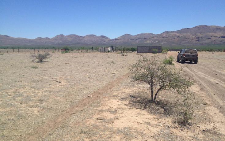 Foto de terreno habitacional en venta en  , el sacramento, chihuahua, chihuahua, 1147585 No. 02