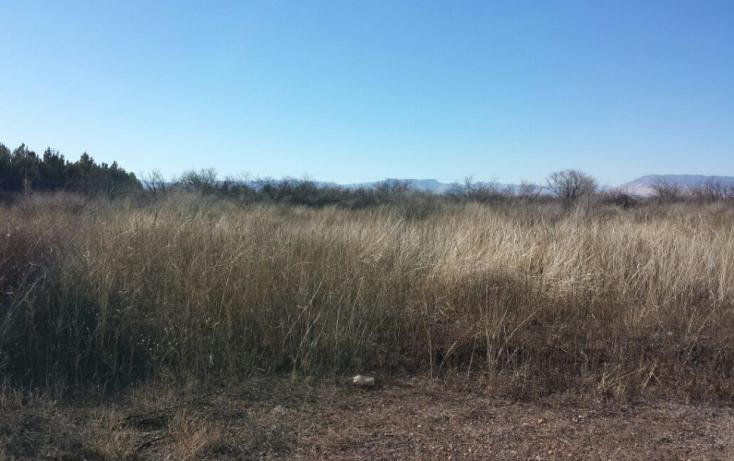 Foto de terreno habitacional en venta en, el sacramento, chihuahua, chihuahua, 772283 no 01