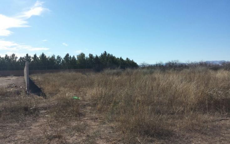 Foto de terreno habitacional en venta en, el sacramento, chihuahua, chihuahua, 772283 no 04