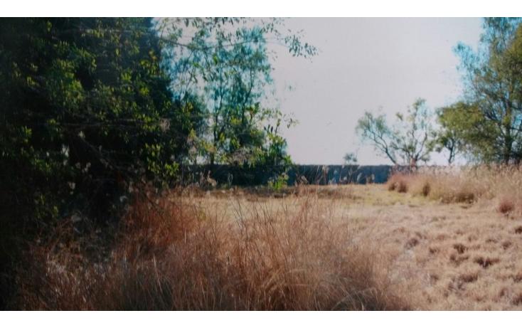 Foto de terreno habitacional en venta en  , el salto de ojocaliente, aguascalientes, aguascalientes, 1700438 No. 03