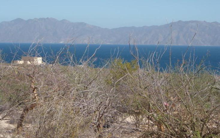 Foto de terreno habitacional en venta en  , el sargento, la paz, baja california sur, 1068265 No. 01