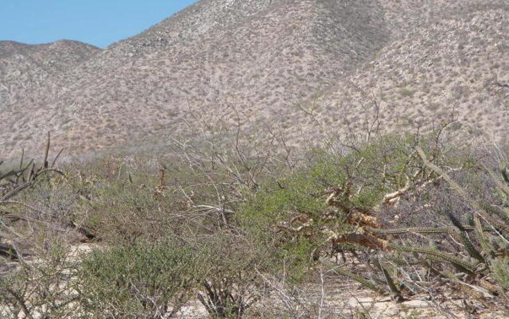 Foto de terreno habitacional en venta en  , el sargento, la paz, baja california sur, 1068265 No. 03