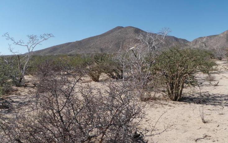 Foto de terreno habitacional en venta en  , el sargento, la paz, baja california sur, 1068265 No. 07