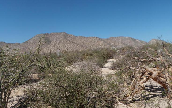 Foto de terreno habitacional en venta en  , el sargento, la paz, baja california sur, 1068265 No. 08