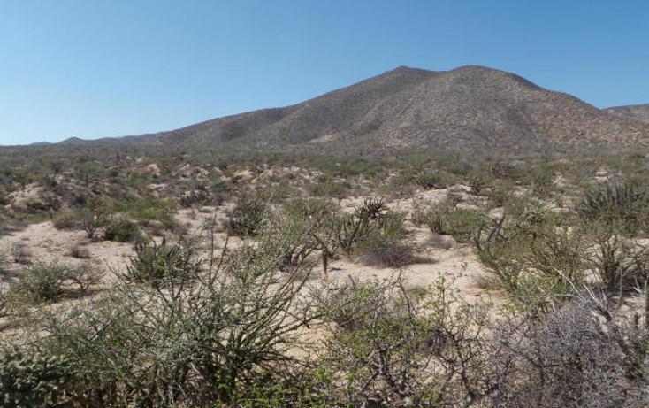 Foto de terreno habitacional en venta en  , el sargento, la paz, baja california sur, 1068265 No. 11