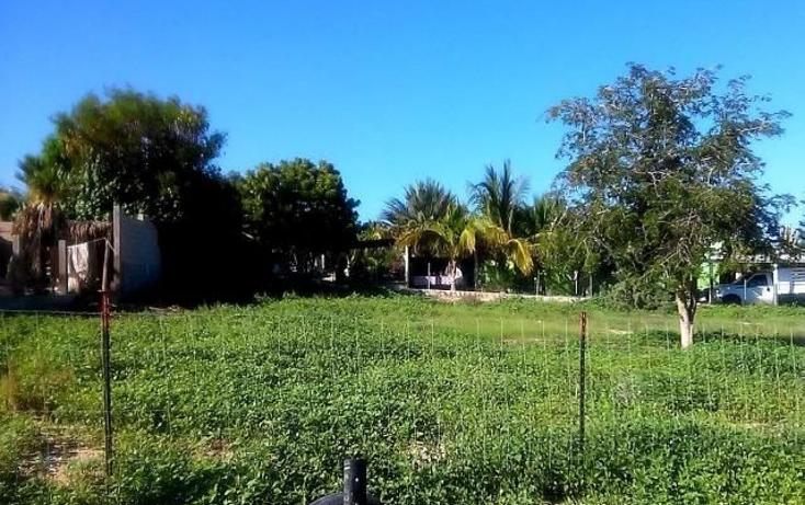 Foto de terreno habitacional en venta en  , el sargento, la paz, baja california sur, 1073601 No. 02
