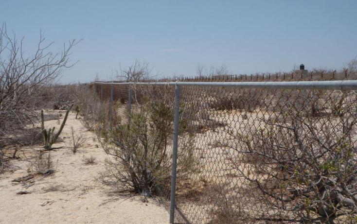 Foto de terreno habitacional en venta en  , el sargento, la paz, baja california sur, 1076795 No. 10