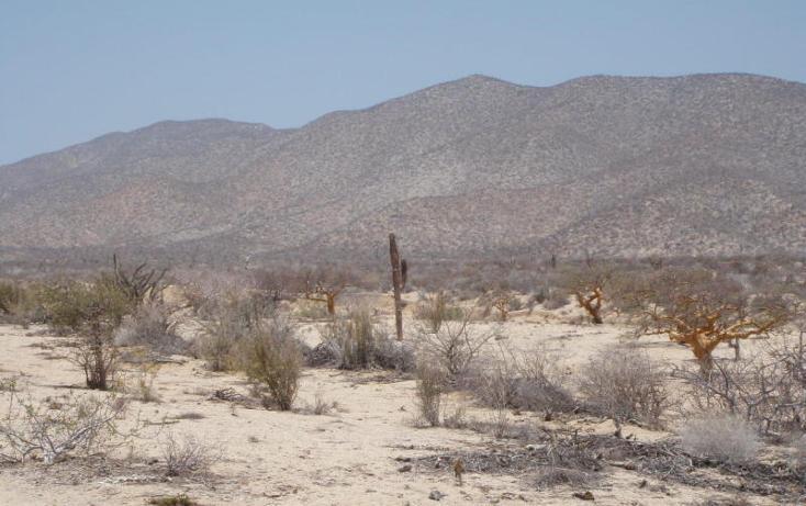Foto de terreno habitacional en venta en  , el sargento, la paz, baja california sur, 1076795 No. 11