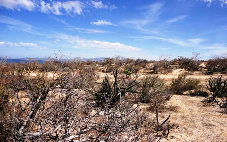 Foto de terreno habitacional en venta en  , el sargento, la paz, baja california sur, 1086277 No. 02