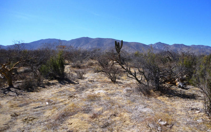 Foto de terreno habitacional en venta en  , el sargento, la paz, baja california sur, 1086277 No. 03