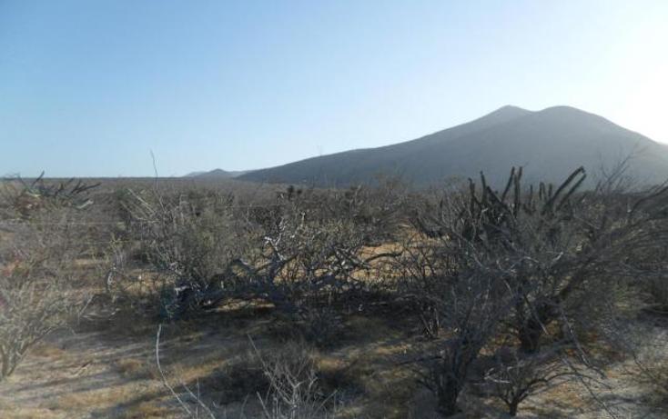 Foto de terreno habitacional en venta en  , el sargento, la paz, baja california sur, 1119259 No. 02