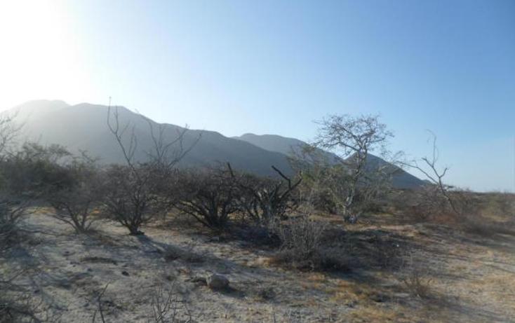 Foto de terreno habitacional en venta en  , el sargento, la paz, baja california sur, 1119259 No. 06
