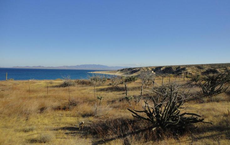 Foto de terreno habitacional en venta en  , el sargento, la paz, baja california sur, 1134819 No. 02