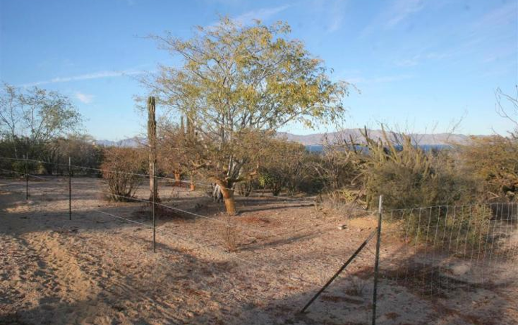 Foto de terreno habitacional en venta en  , el sargento, la paz, baja california sur, 1136167 No. 02