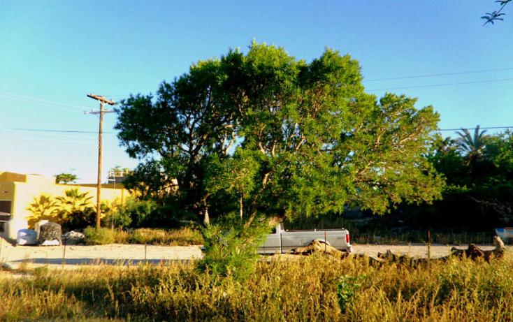 Foto de terreno habitacional en venta en  , el sargento, la paz, baja california sur, 1149355 No. 05
