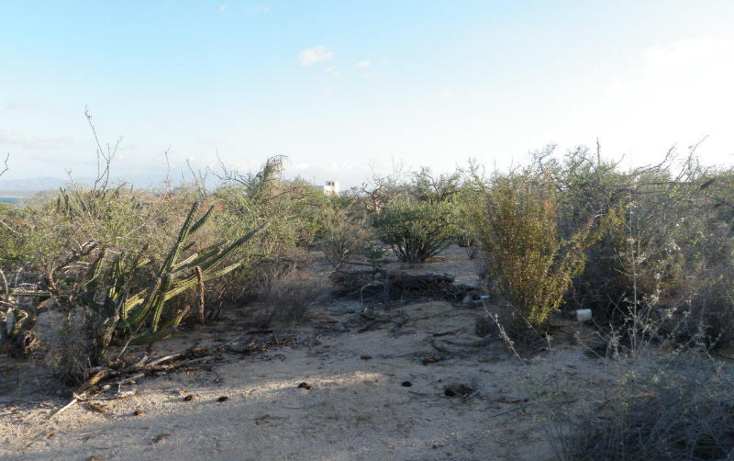 Foto de terreno habitacional en venta en  , el sargento, la paz, baja california sur, 1172571 No. 13