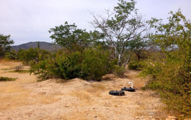 Foto de terreno habitacional en venta en  , el sargento, la paz, baja california sur, 1193945 No. 06