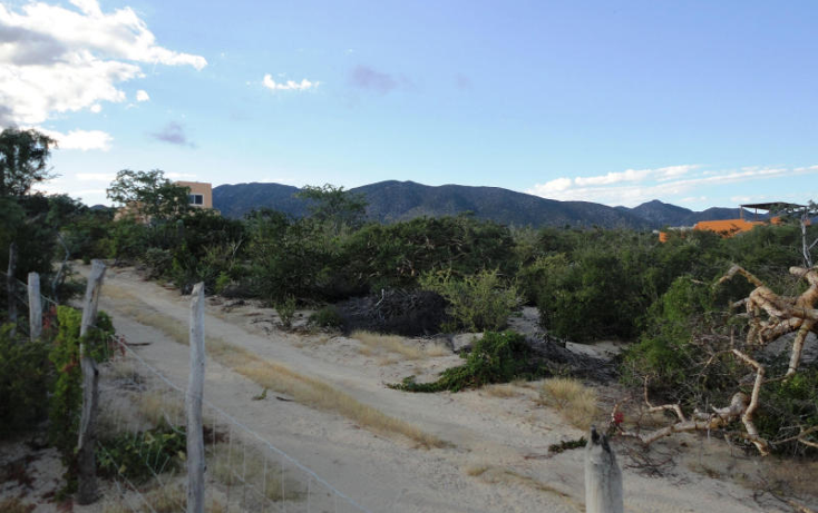Foto de terreno habitacional en venta en  , el sargento, la paz, baja california sur, 1246635 No. 03