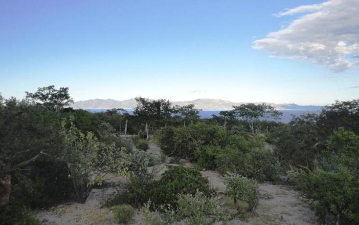 Foto de terreno habitacional en venta en  , el sargento, la paz, baja california sur, 1246635 No. 04