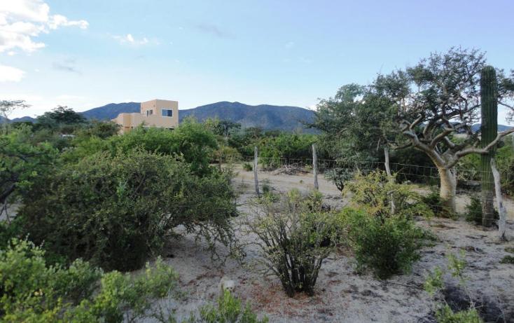 Foto de terreno habitacional en venta en  , el sargento, la paz, baja california sur, 1246635 No. 07