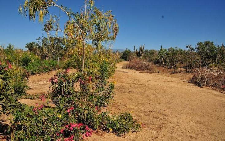 Foto de terreno habitacional en venta en  , el sargento, la paz, baja california sur, 1249945 No. 01