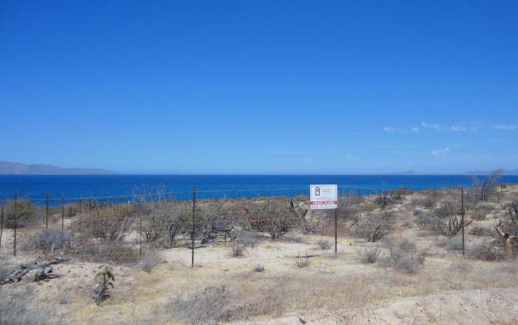 Foto de terreno habitacional en venta en  , el sargento, la paz, baja california sur, 1279809 No. 03