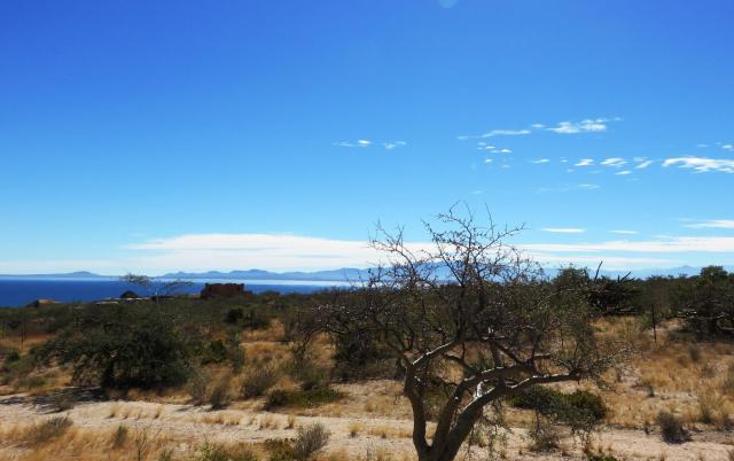 Foto de terreno habitacional en venta en  , el sargento, la paz, baja california sur, 1403893 No. 03
