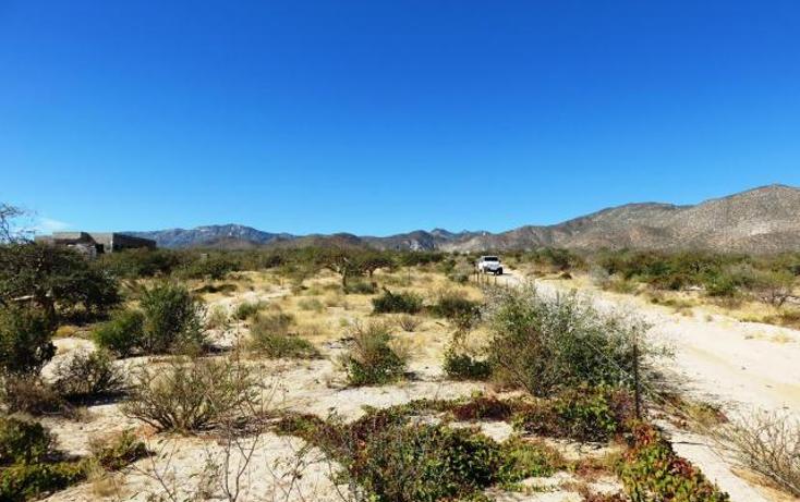 Foto de terreno habitacional en venta en  , el sargento, la paz, baja california sur, 1403893 No. 05