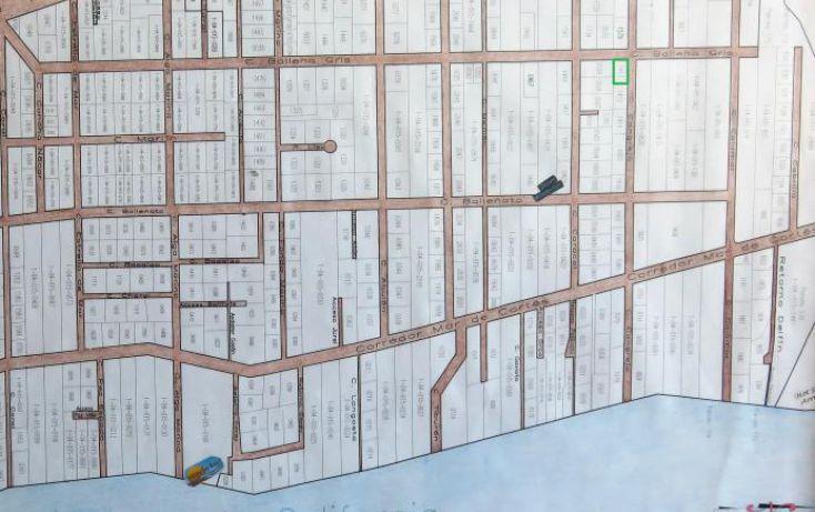 Foto de terreno habitacional en venta en, el sargento, la paz, baja california sur, 1403893 no 10