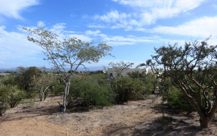 Foto de terreno habitacional en venta en  , el sargento, la paz, baja california sur, 1436649 No. 03