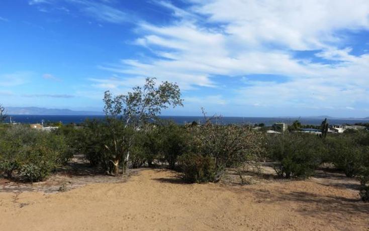 Foto de terreno habitacional en venta en  , el sargento, la paz, baja california sur, 1436649 No. 04