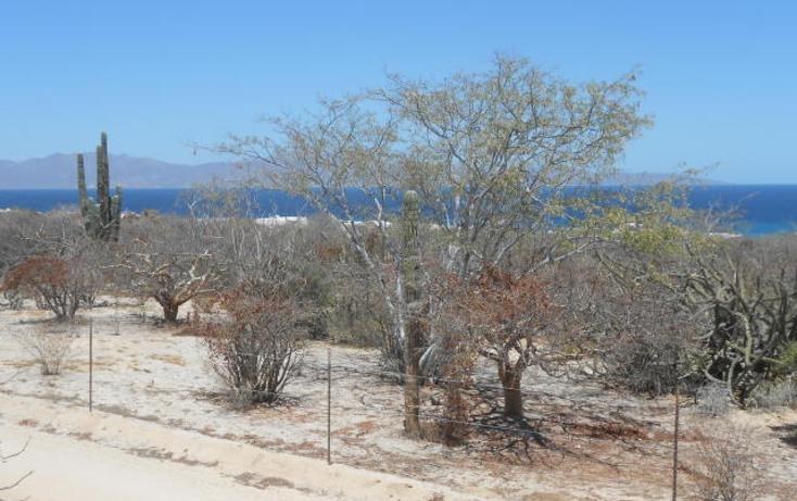 Foto de terreno habitacional en venta en  , el sargento, la paz, baja california sur, 1440137 No. 03