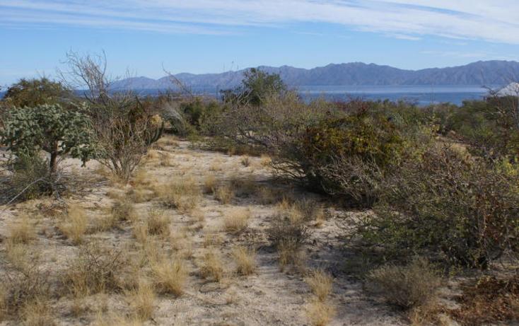 Foto de terreno habitacional en venta en  , el sargento, la paz, baja california sur, 1616364 No. 01