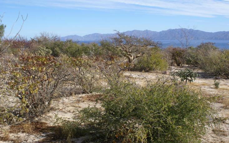 Foto de terreno habitacional en venta en  , el sargento, la paz, baja california sur, 1616364 No. 02
