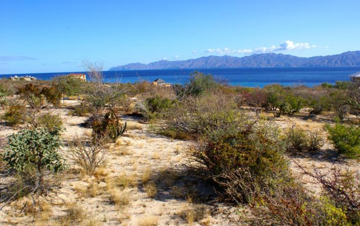 Foto de terreno habitacional en venta en  , el sargento, la paz, baja california sur, 1616364 No. 05