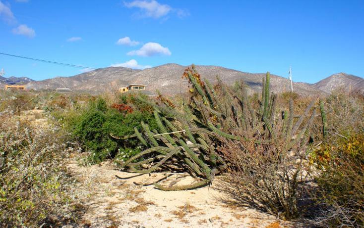 Foto de terreno habitacional en venta en  , el sargento, la paz, baja california sur, 1616364 No. 07