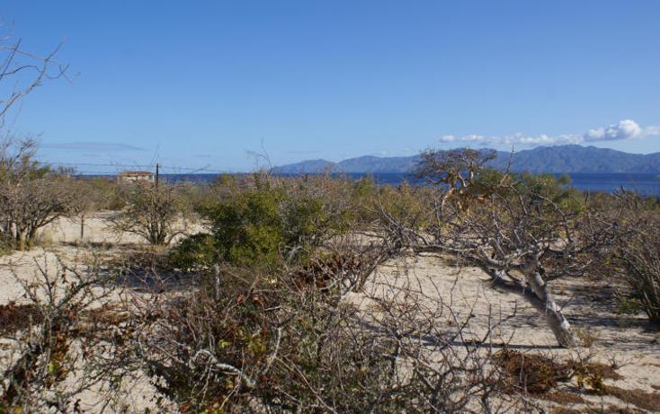 Foto de terreno habitacional en venta en  , el sargento, la paz, baja california sur, 1616364 No. 08
