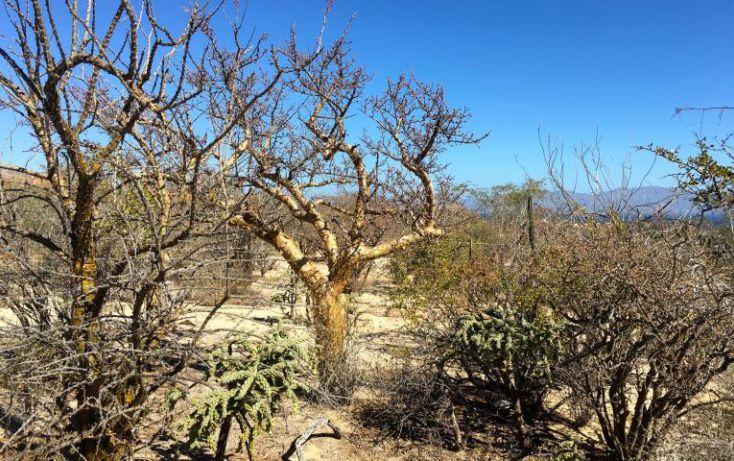 Foto de terreno habitacional en venta en, el sargento, la paz, baja california sur, 1699702 no 14