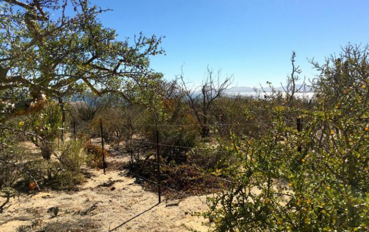 Foto de terreno habitacional en venta en, el sargento, la paz, baja california sur, 1699702 no 15