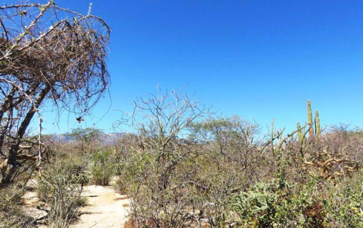 Foto de terreno habitacional en venta en, el sargento, la paz, baja california sur, 1737084 no 05