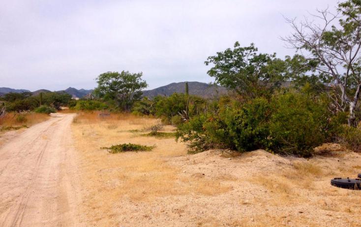 Foto de terreno habitacional en venta en  , el sargento, la paz, baja california sur, 1780300 No. 02