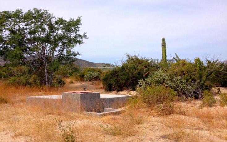 Foto de terreno habitacional en venta en  , el sargento, la paz, baja california sur, 1780300 No. 07