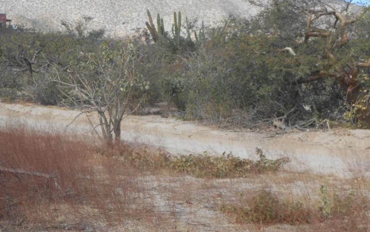 Foto de terreno habitacional en venta en  , el sargento, la paz, baja california sur, 2636295 No. 05