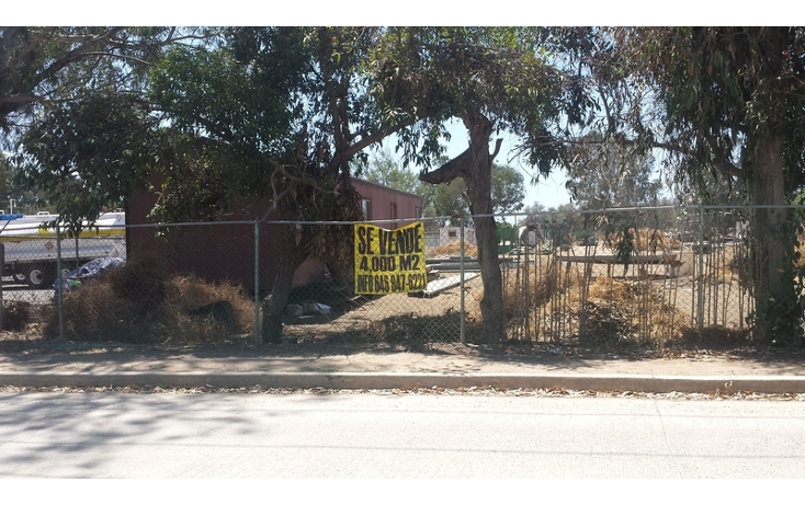 Foto de terreno habitacional en venta en  , el sauzal, ensenada, baja california, 498829 No. 01