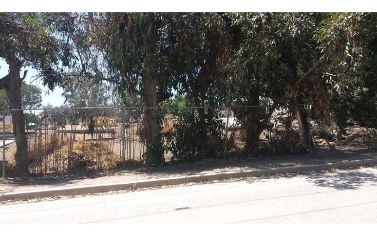 Foto de terreno habitacional en venta en  , el sauzal, ensenada, baja california, 498829 No. 03