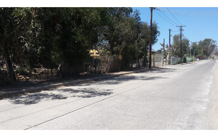 Foto de terreno habitacional en venta en  , el sauzal, ensenada, baja california, 498829 No. 05
